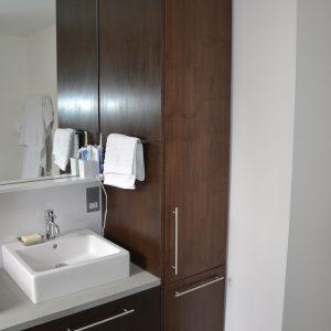 Custom toilet cabinet